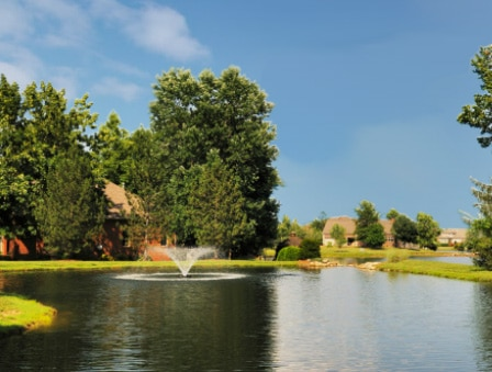 Picture of a pond 3 weeks after treating with fluridone aquatic herbicide